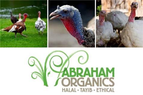 abraham-organics-turkey